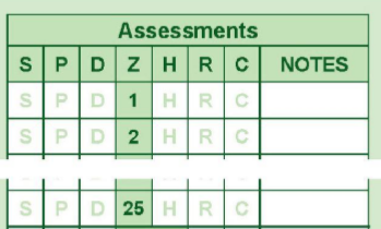 Driving Test Assessments Table